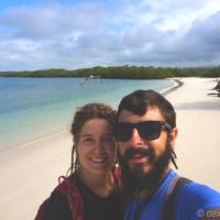 Galápagos: nedant entre taurons, tortugues i llops marins